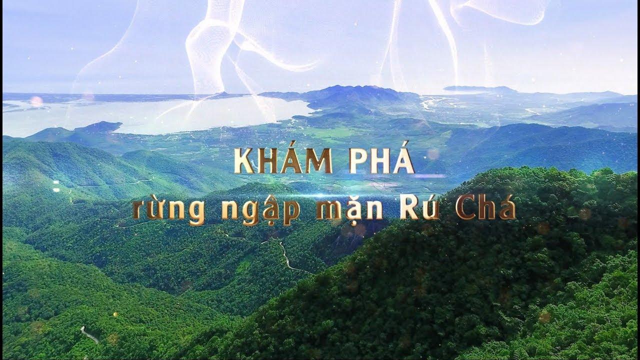 rung-ngap-man-ru-cha