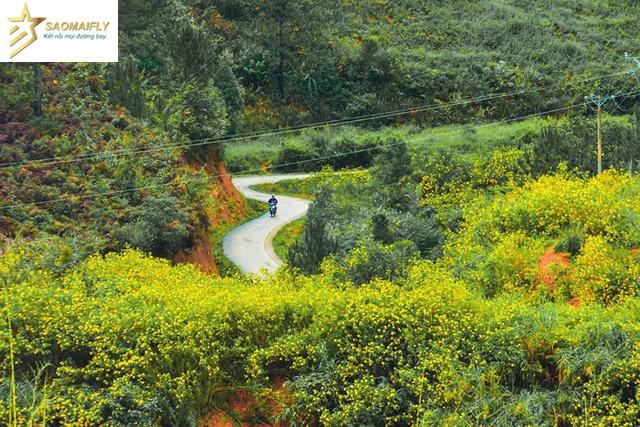 Những điểm đến đẹp nhất Việt Nam du khách đi theo từng tháng trong năm